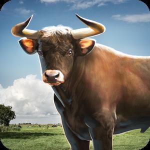 Бег быков 3D